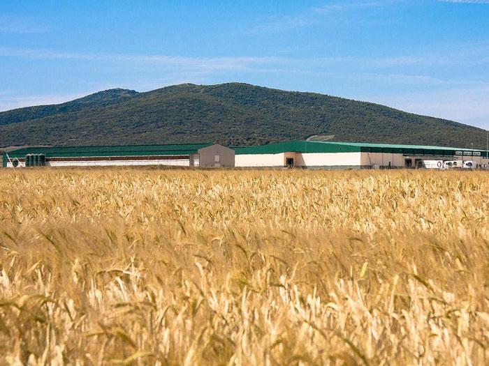 Ingeniería agroalimentaria en Zaragoza