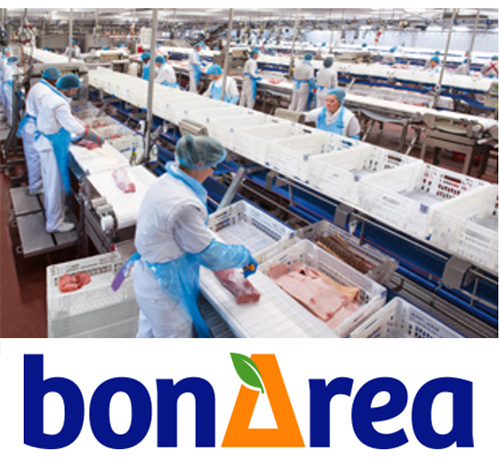 futuro- empleo-Bonarea-zaragoza